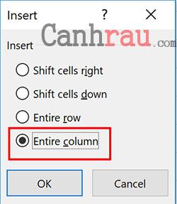 cách thêm, chèn hàng và cột trong Excel hình 2