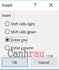 cách thêm, chèn hàng và cột trong Excel hình 5