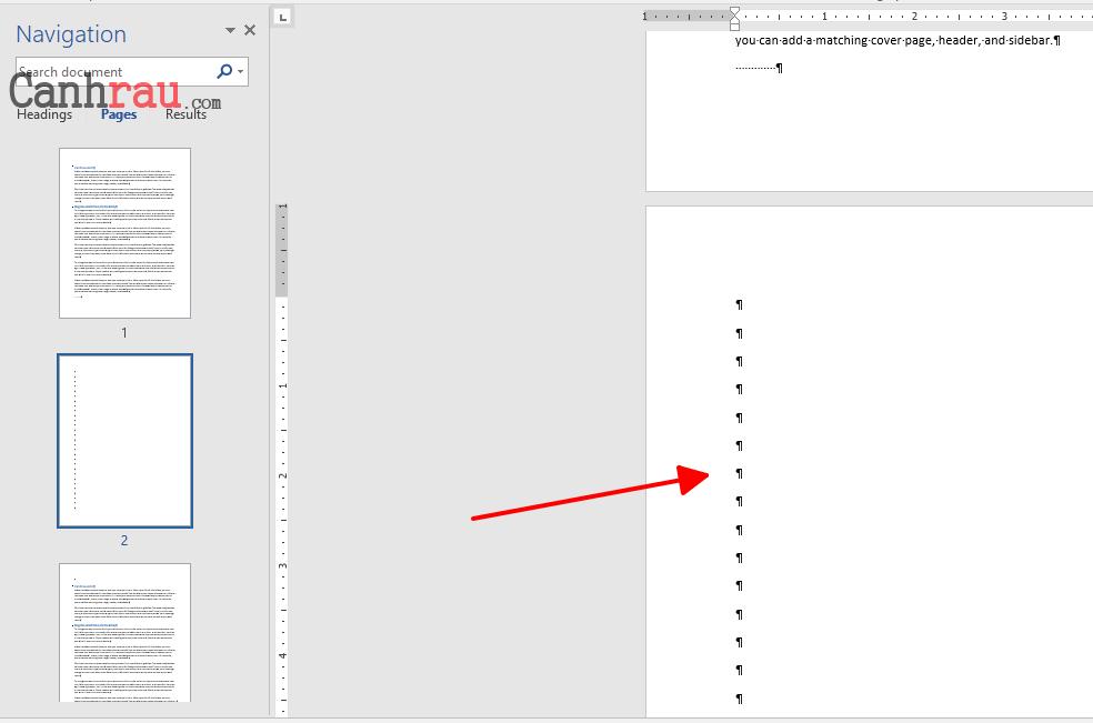 Cách xóa trang trắng trong Word hình 5