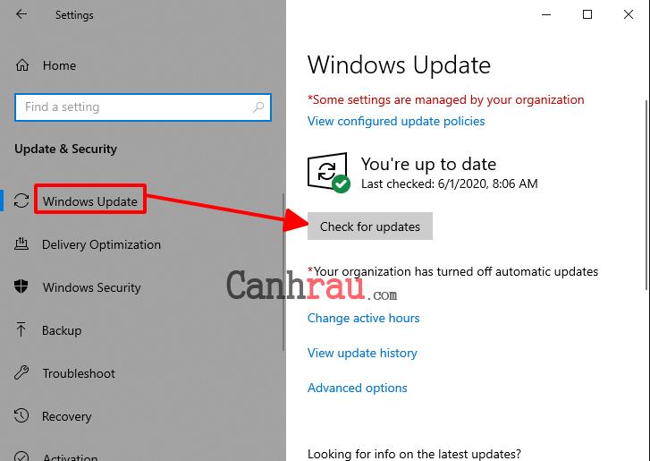 Cách update driver hiệu quả trên Windows 10 hình 5