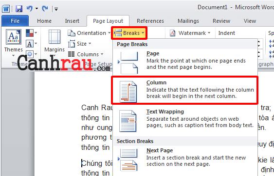 Cách chia cột trong Microsoft Word hình 8