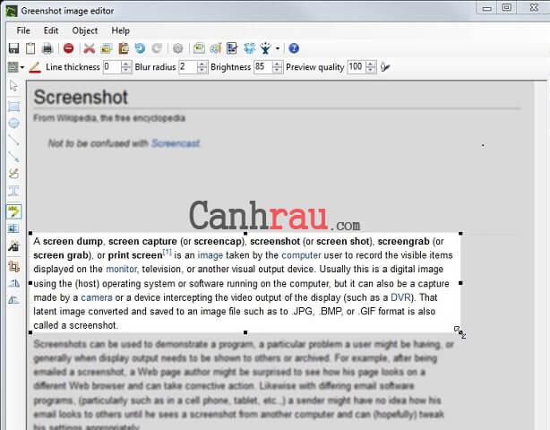 Top phần mềm chụp ảnh màn hình máy tính hình 7