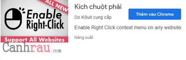 Cách copy trang web không cho copy hình 6