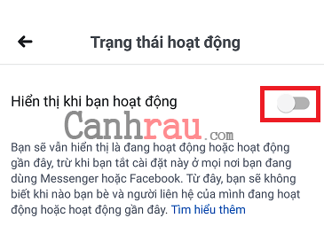 Hướng dẫn ẩn thời gian truy cập trên Facebook hình 7