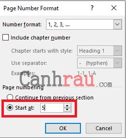 Cách đánh số trang trong Word 2016 hình 14