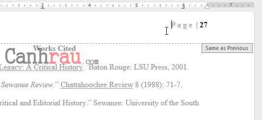 Cách đánh số trang trong Word 2016 hình 18
