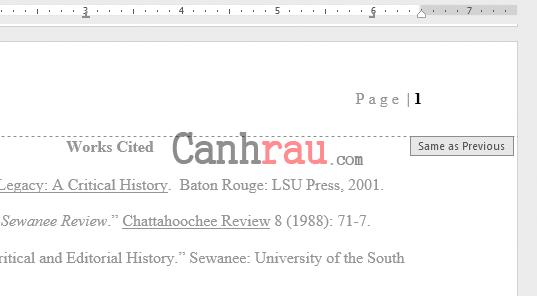 Cách đánh số trang trong Word 2016 hình 21