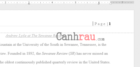 Cách đánh số trang trong Word 2016 hình 3