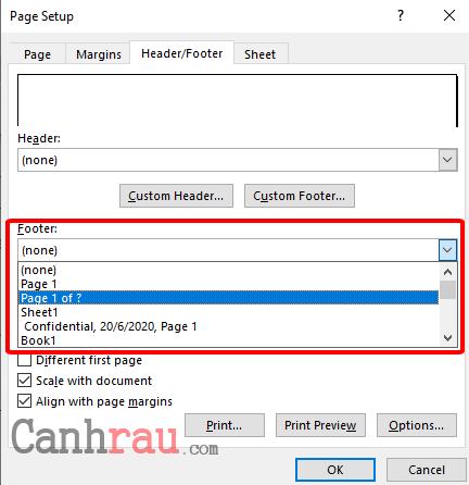 Cách đánh số trang trong Excel hình 2