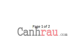 Cách đánh số trang trong Excel hình 4