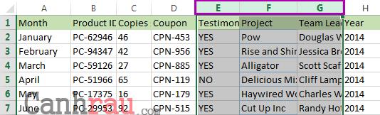 cách chèn thêm cột trong Excel hình 4