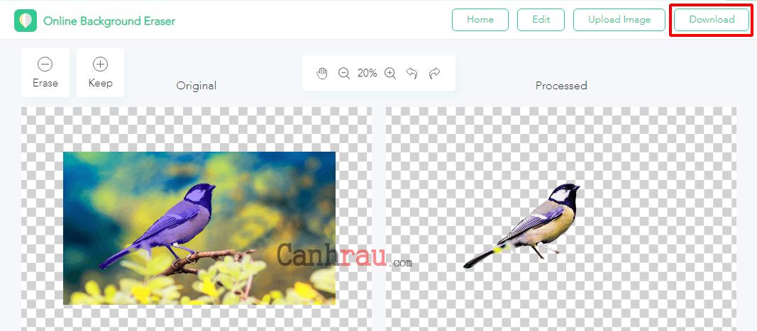 Cách tách nền xóa phông online ảnh hình 2
