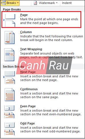 Cách ngắt trang trong Word hình 5