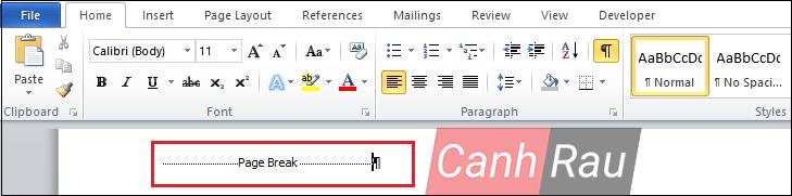 Cách ngắt trang trong Word hình 8