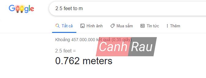 1 feet bằng bao nhiêu m hình 2