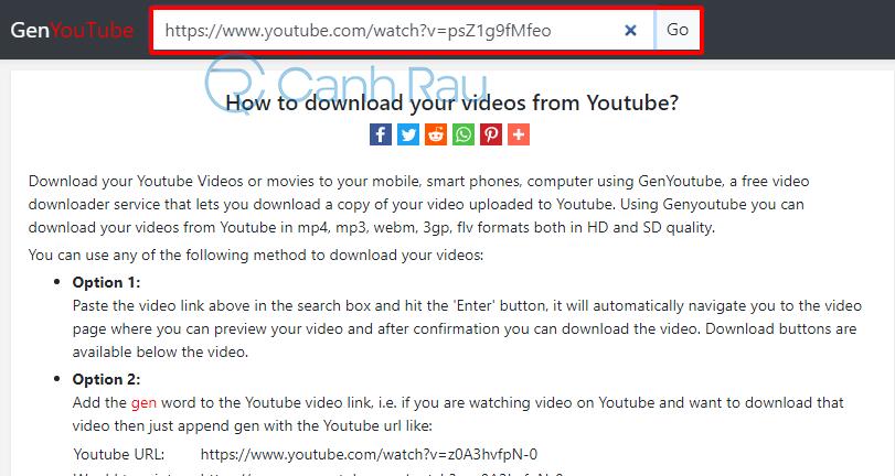 Cách tải nhạc trên Youtube hình 12