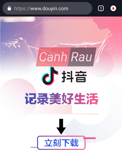 Cách tải Tik Tok Trung Quốc hình 1