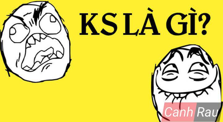 KS nghĩa là gì hình 1