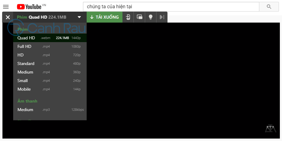 Cách tải video trên Youtube hình 28