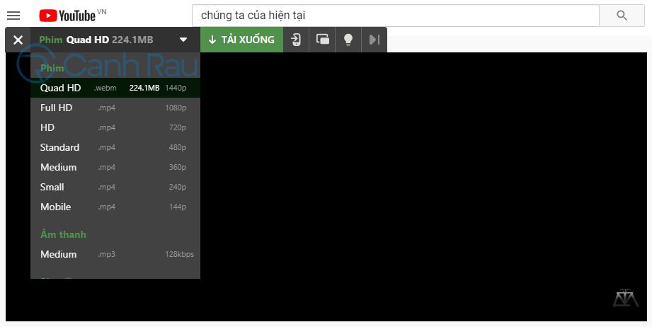 Cách tải video trên Youtube về máy tính hình 15