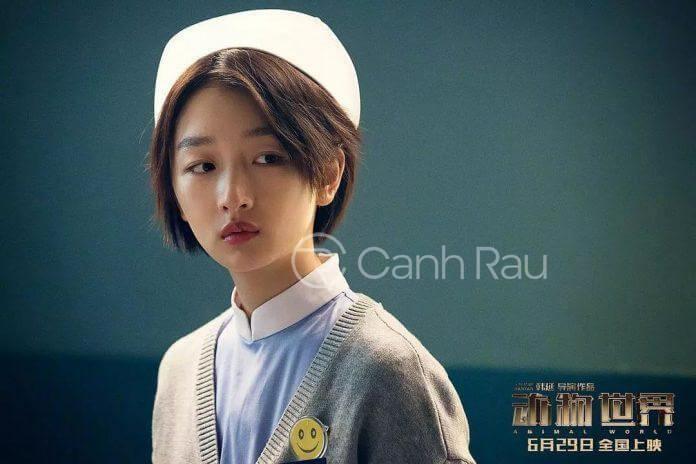 Những bộ phim hay nhất của Châu Đông Vũ hình 7