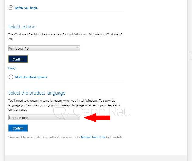 Hướng dẫn cách tải Win 10 ISO chính thức từ Microsoft hình 15