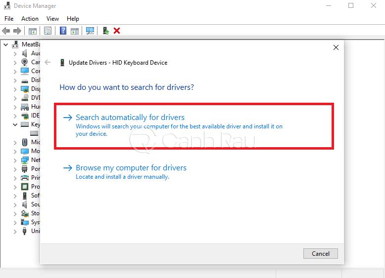 Hướng dẫn sửa lỗi bàn phím laptop bị liệt hình 10